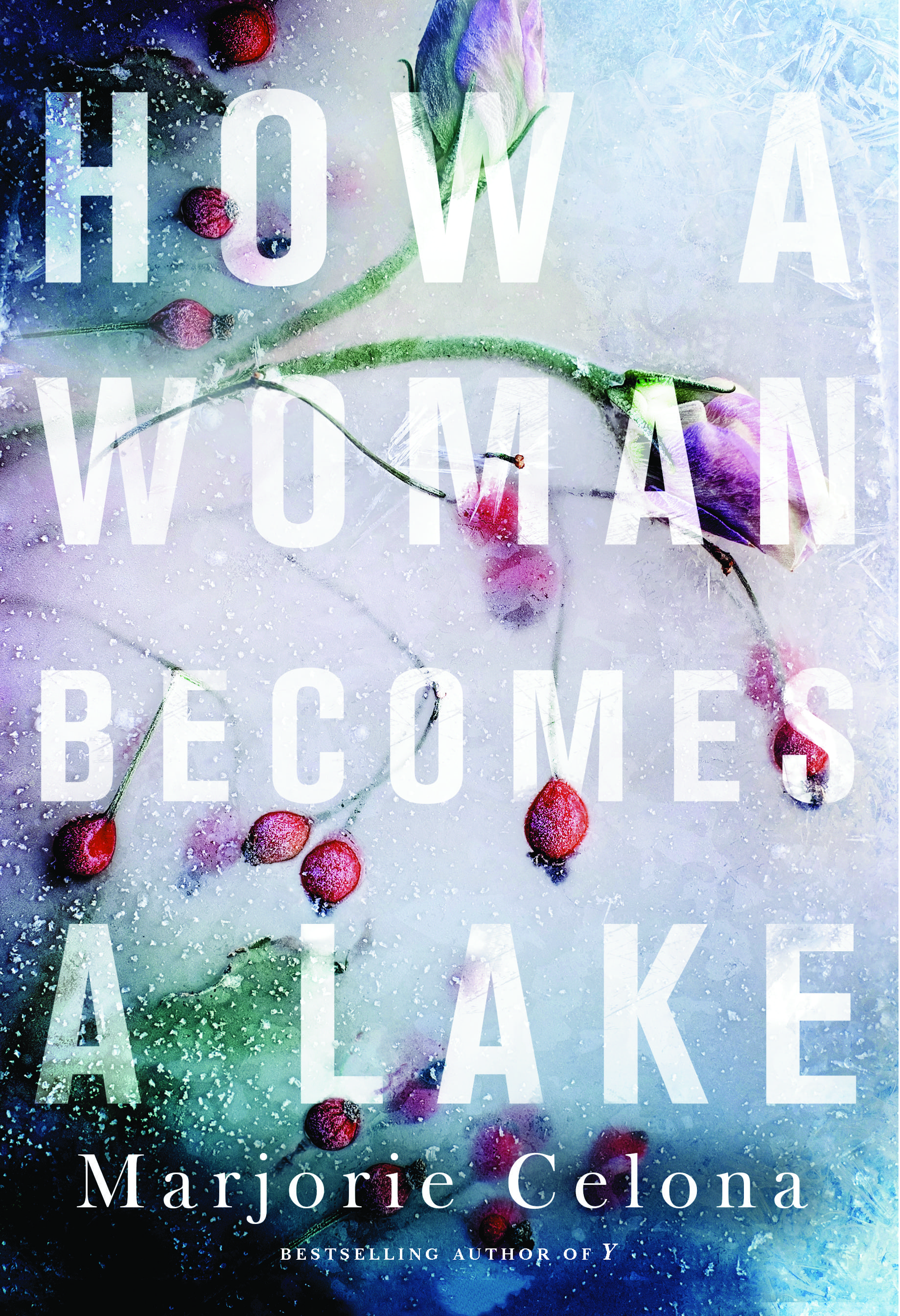 The cover of How A Woman Becomes A Lake