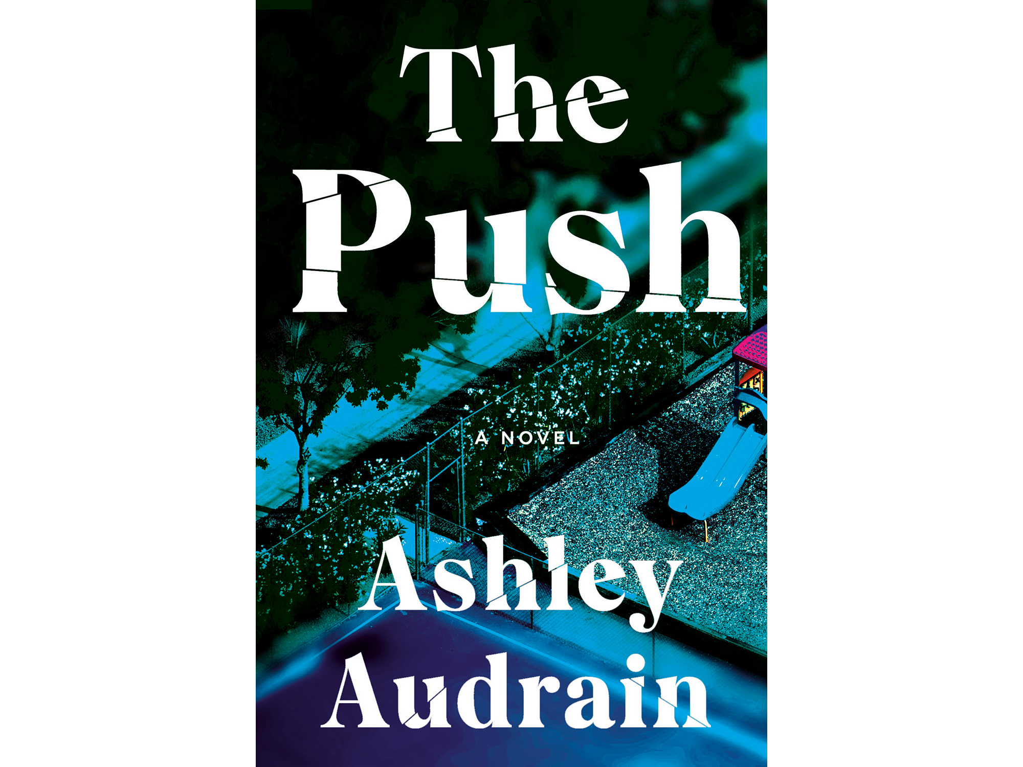 The cover of Ashley Audrain's The Push