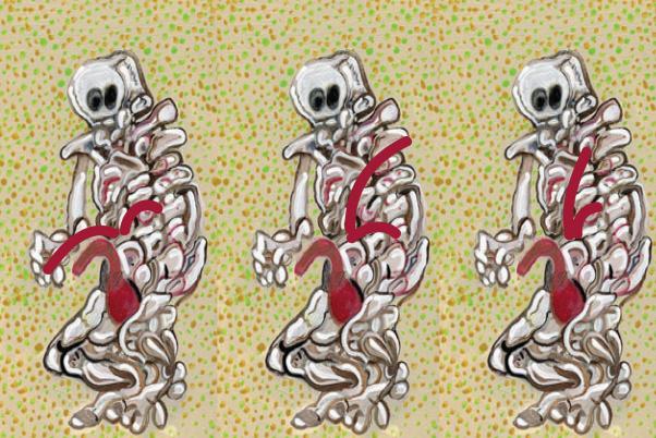 Illustration of skeletons