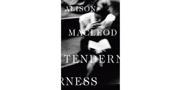 The cover of Alison MacLeod's Tenderness