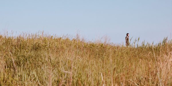 A photo of Casey Plett standing silhouetted against the sky across a field of tall grasses.